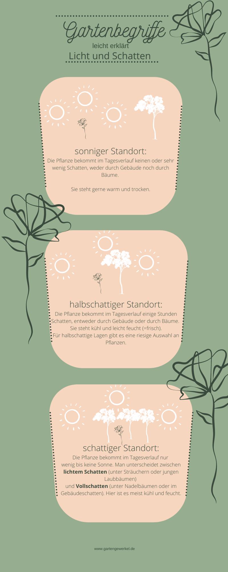 Gartenbegriffe leicht erklärt Licht und Schatten Sonniger Standort Halbschattiger Standort schattiger Standort